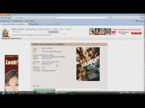 How to download from the piratebay