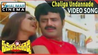 Samarasimha Reddy     Chaliga Undannade Video Songs    Bala Krishna, Anjala Javeri    Shalimarcinema