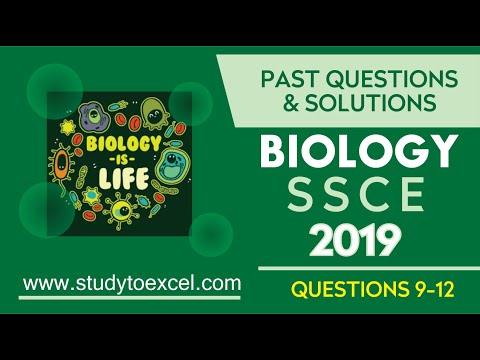 WAEC BIOLOGY 2019 PAST QUESTIONS 9-12 RESPIRATION - YouTube