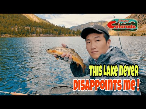 Another Successful Day At Georgetown Lake In Colorado, Bait Finesse / Fly Trout Fishing #송어낚시 #マス釣り