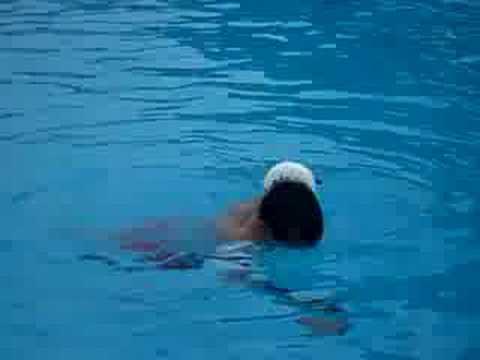 Tiburon en la piscina youtube for En la piscina