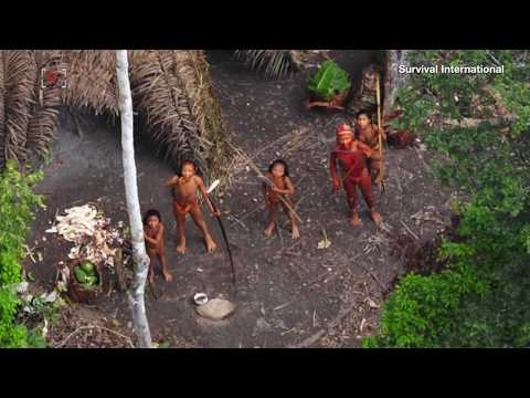 Reported Murder of Uncontacted Tribe Exposes Mining Threats in Brazil's Amazon