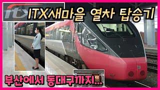 [열차 탑승기]부산에서 동대구역까지 ITX새마을 여행