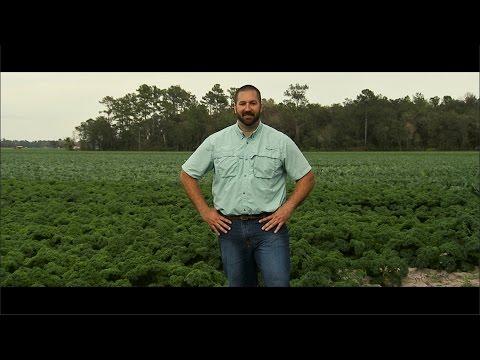 Your Florida Farmer: Adam Lytch
