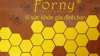 Sữa ong chúa Bình Dương - Mật ong rừng Bình Dương - Tinh nghệ Vàng Bình Dương - HoneyB Bình Dương