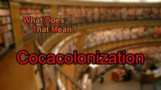 What does Cocacolonization mean?