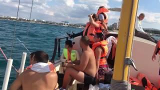 Акула в Черном море(Гости у Любомира Витязево., 2017-01-24T16:37:31.000Z)
