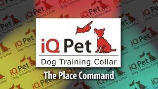 Iq Pet Dog Training Part 4 - The Place Command