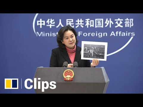 'This is simply patriotism', Beijing backs Chinese anger over brand boycott of Xinjiang cotton