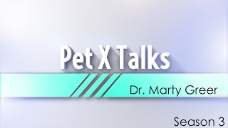 Pet X Talks - Dr. Marty Greer -  Sources For Finding The Right Pet + How Knowing Genetics Can Help
