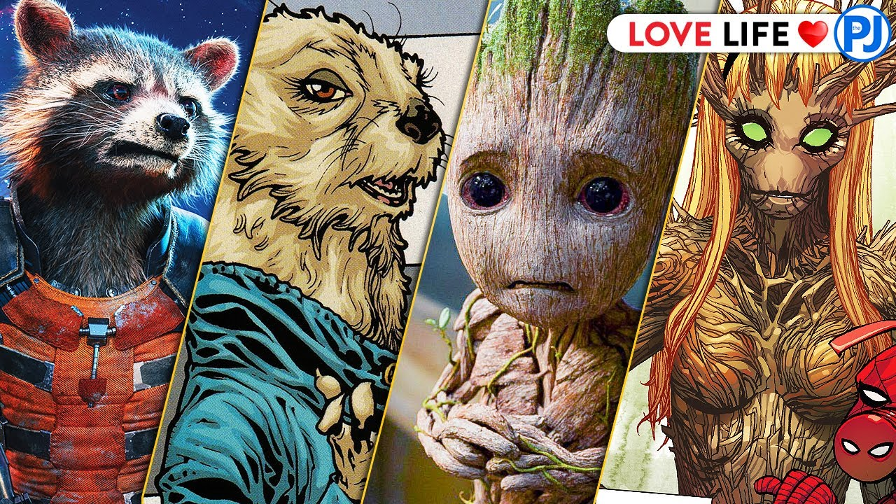 Girl Friends of Groot and Rocket in Comics? - PJ Explained