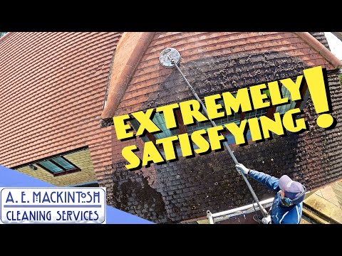 Extremely Satisfying Roof Clean!