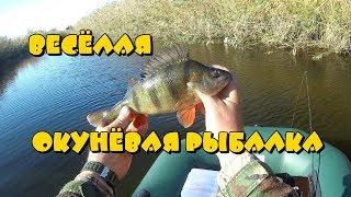 Веселая окуневая рыбалка