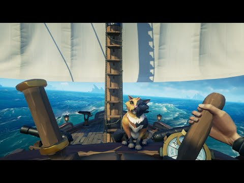 Sea of thieves - Pet cat