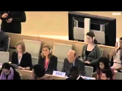 UN rights investigator on Iran named‎ 17 June 2011