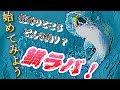 鯛ラバ入門 タイラバに行く前に見る動画