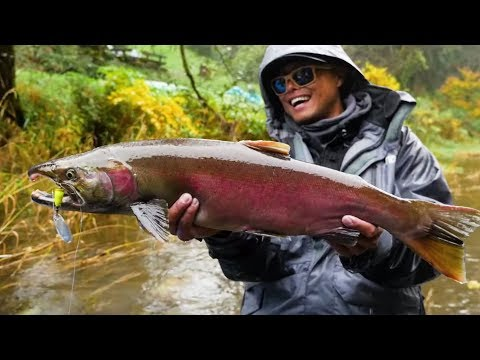 Twitching, Spinners, Eggs & More! (COHO FISHING MADNESS!!)