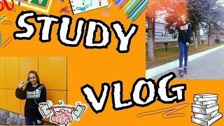 STUDY VLOG | 11 КЛАСС / ШКОЛА / УРОКИ