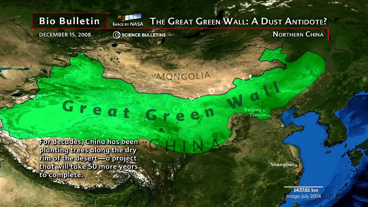 Znalezione obrazy dla zapytania china gobi desert green wall