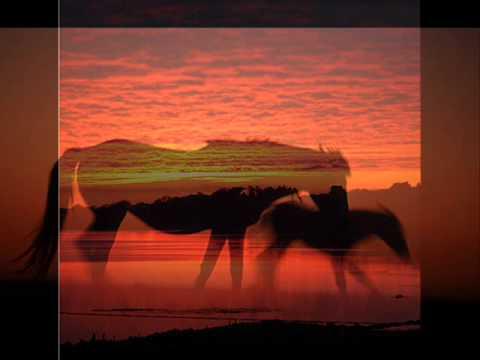 Danny Elfman - BLACK BEAUTY (1994) - Soundtrack Suite