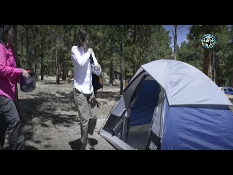 Colorado Parks & Wildlife - Camping & Hiking in Bear Country