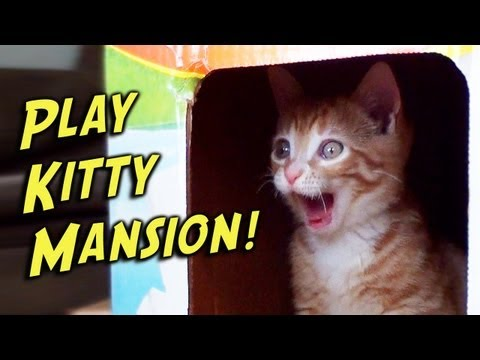 Play-Kitty Mansion!