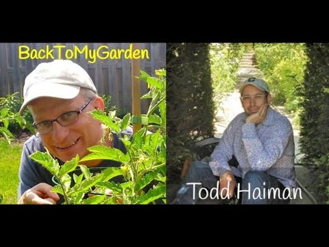 The 4th Dimension of Artistic Garden Design with Todd Haiman