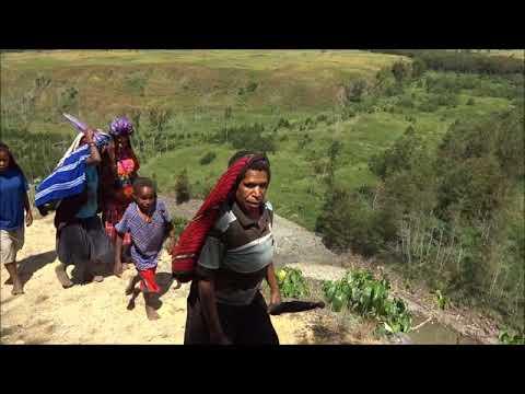 Indonesia: Baliem Valley, Papua Province インドネシア・パプア州バリエム渓谷