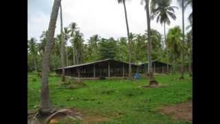 Poultry Farm WITH Land for sale in Kuliyapitiya (www.ADSking.lk)