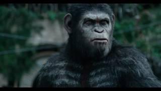 Цезерь говoрит с людьми (планета обезьян: революция)