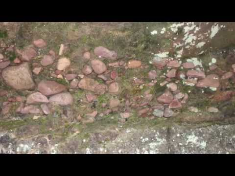 Geology and History of Parfrey's Glen