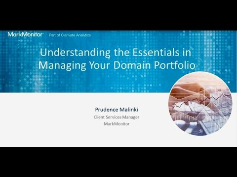 Understanding the Essentials in Managing your Domain Portfolio