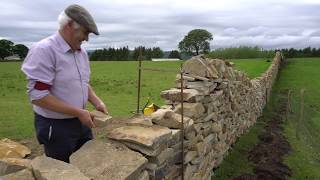 Patsy McInaw - Dry Stone Wall Building