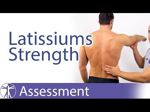 Latissimus Dorsi Muscle Strength Assessment