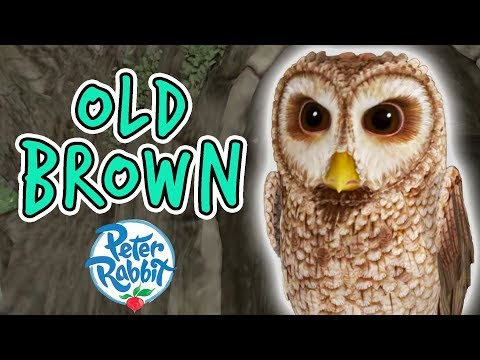 Peter Rabbit - Old Brown Tales Compilation | 20 minutes | Adventures with Peter Rabbit