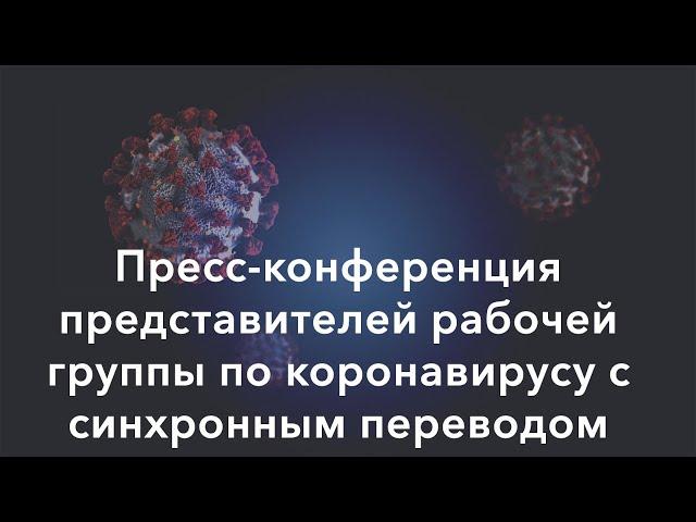 Прямая трансляция пресс-конференции рабочей группы по коронавирусу (24 марта)