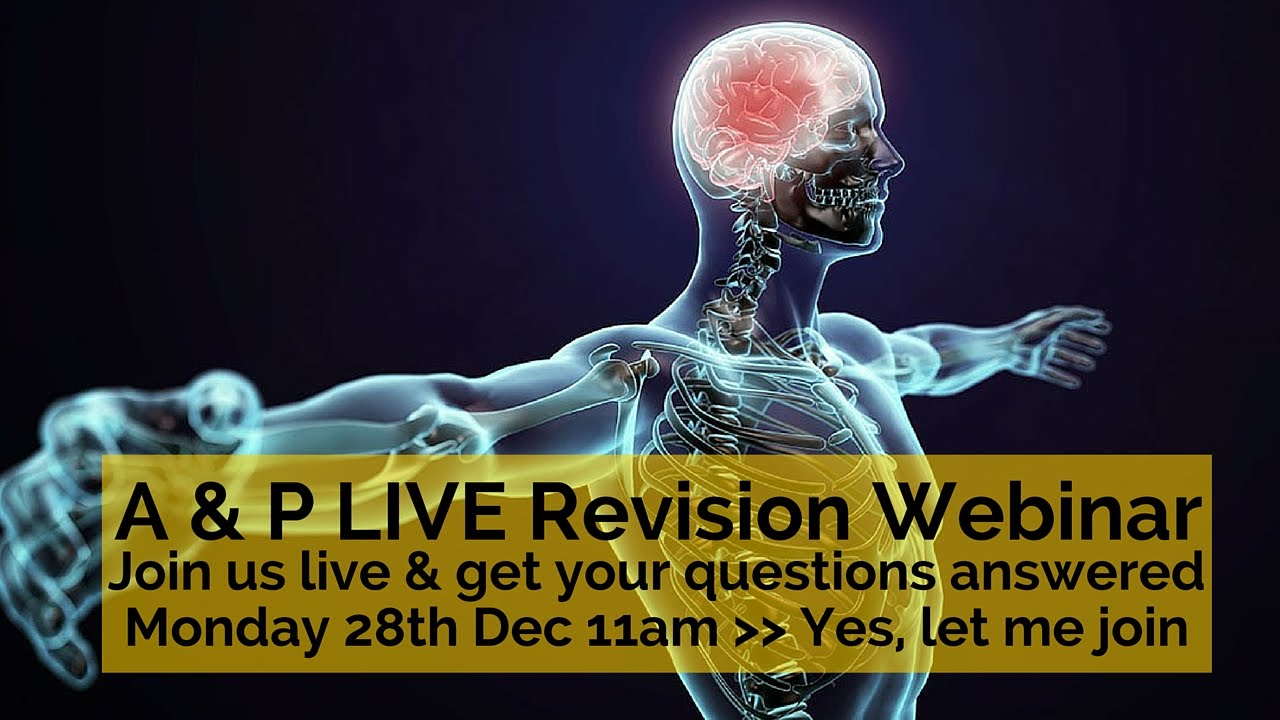 Anatomy and Physiology Revision: Live Webinar and Q & A Session ...