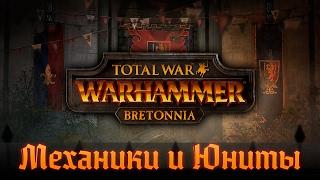 Бретонния - Механики и Юниты | Total War: Warhammer