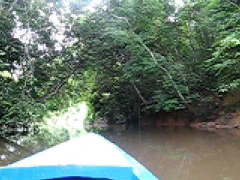 Lambarene boat trip, Gabon - Central Africa