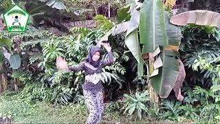 Si Cantik Felisa Pake Baju Kebaya Betawi Main golok Silang Beksi Sejagat Bumi
