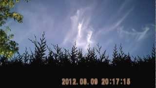 Vierge Marie ...vierge miraculeuse 09.08.2012.AVI