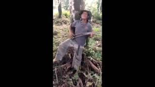 Julia Zahra  - Just an illusion (Funny Samoan Video)