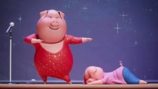 (LoSpettacolo yeni karikatür gülen '''' şarkı, domuz dans arasında ve kirpiler Kaya geliyor.TR)
