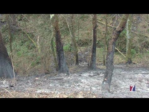 Vecinos y alcalde están convencidos de que el incendio de Muskiz fue provocado.