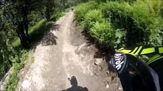 Viola St Gree  Trail Ottovolante