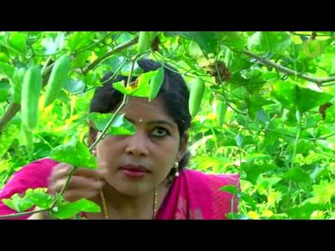 genuine organic farming by an agricultural officer