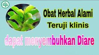 DR OZ - Tips Meredakan Nyeri Payudara Saat Menstruasi (21/1/18) Part 2.