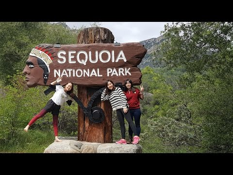 Sequoia National Park: Giant Forest Museum, General Sherman Tree, Paradise Creek Trail
