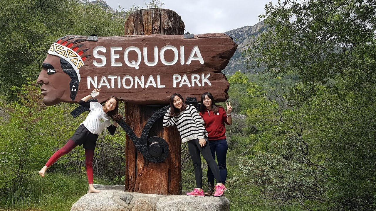 Sequoia National Park: Giant Forest Museum, General ...