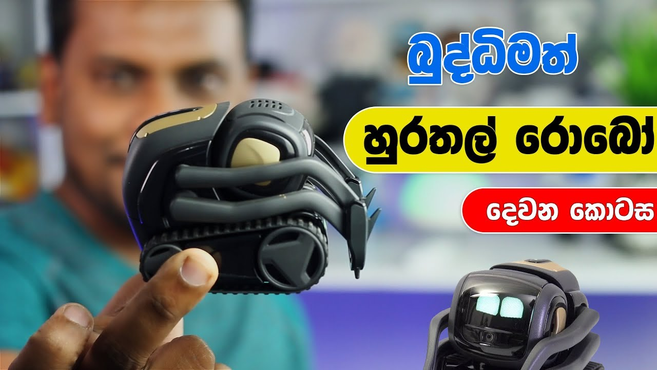 Vector Robot Explained 🇱🇰